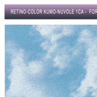 S-1CA-WEB-KUMO-COLOR