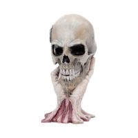 2-Metallica---Sad-But-True-Skull-22cm